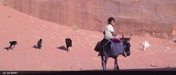 Jordanie desert 700x300