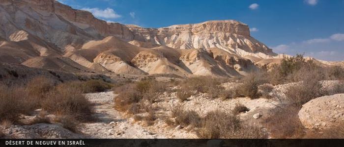 thumbs_israel_desert_neguev