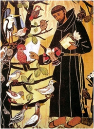 St François aux oiseaux